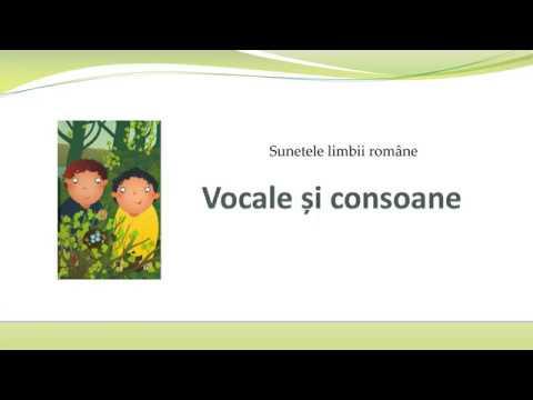 Vocale și consoane - clasa a II-a