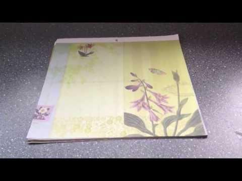 Flora and Fauna paper walkthrough