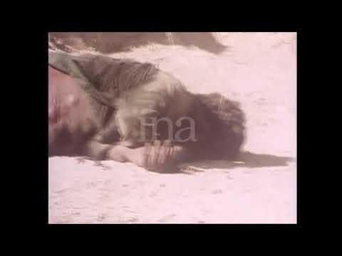 The Battle of Naqfa 21 02 1980