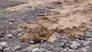 وادي المعيدن - بركة الموز 26/04/2013