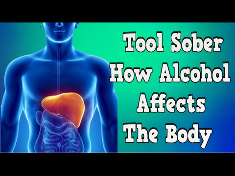 Tool Sober, How Alcohol Affects The Body, Short Term Effects Of Alcohol, Alcohol Statistics