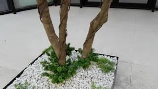 pianta artificiali lux by bm luxury h 5mt