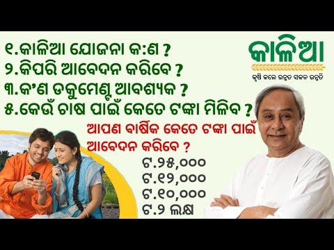 କୃଷକ ପାଇଁ କାଳିଆ ଯୋଜନା ! Odisha Kalia Yojana Details : Application Form, Documents,Loan Amount