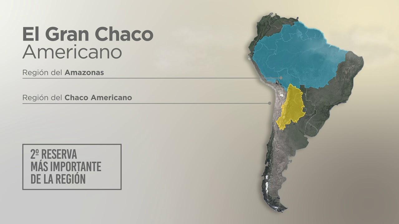 """El Gran Chaco Americano - """"El Impenetrable en Peligro"""" - YouTube"""
