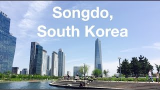 Three Day Weekend in Songdo, South Korea | Amelia Basia