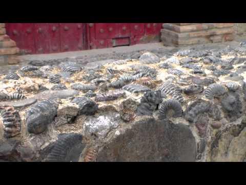 Iglesia construida con fósiles de amonitas y tortugas