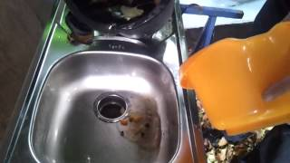 Using our Insinkerator Food Waste Grinder as a