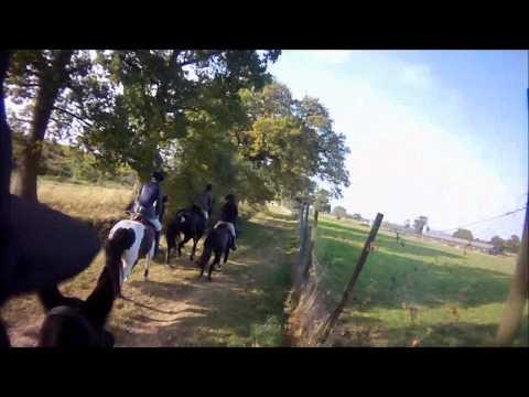 SC & Rma Sandhurst Drag Hunt lines 4 & 5 Ashridge Farm 2011