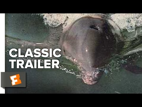 Flipper (1963) Official Trailer - Chuck Connors, Luke Halpin Movie HD