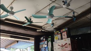 From the Archives: Ceiling fans at electronic store