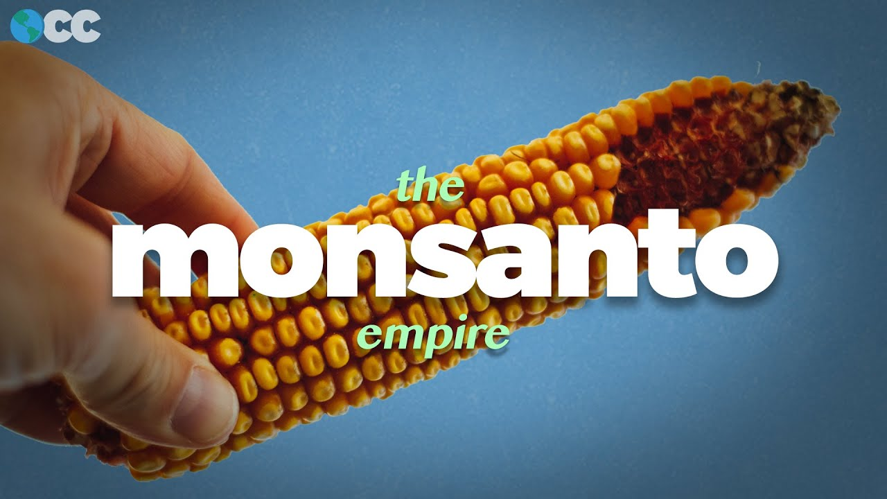 The true cost of Monsanto's food empire