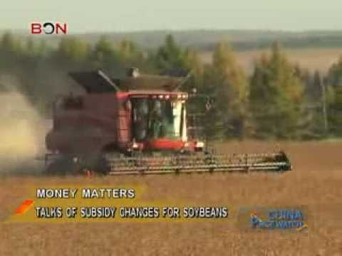 GMO soybeans dominate in China. Soybean policy might change.- China Price Watch - August 14,2013