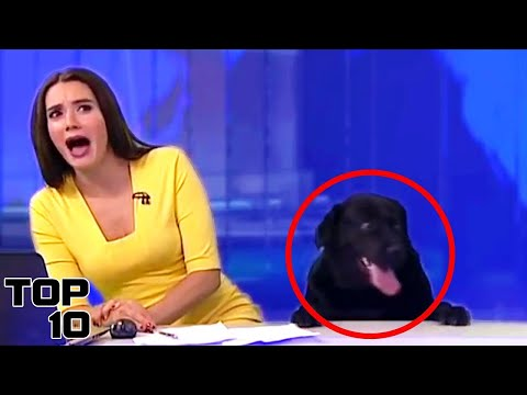 Top 10 Live News Reporting Fails