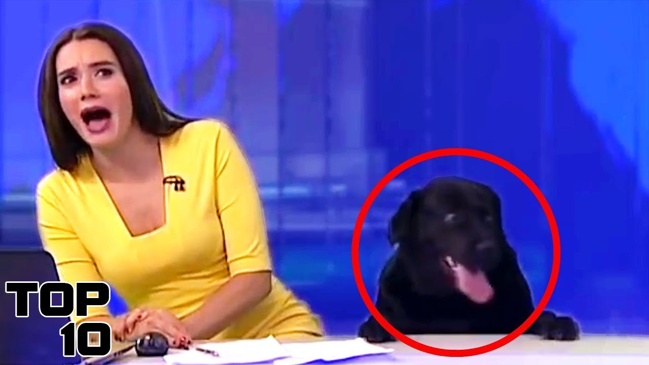 Top 10 Live News Reporting Fails Youtube