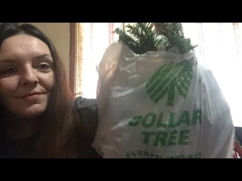 Dollar Tree Haul & What's Really Going On w/Videos thumbnail