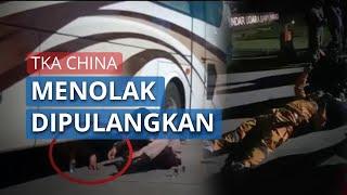 VIDEO Detik-detik TKA China Ngamuk di Bandara Banyuwangi, Masuk Kolong Bus, Ngaku Upah Belum Dibayar
