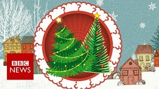 Fake or fir? Your Christmas tree's carbon footprint - BBC News
