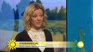 Orkanen Ophelia påväg rakt mot Sverige - Nyhetsmorgon (TV4)