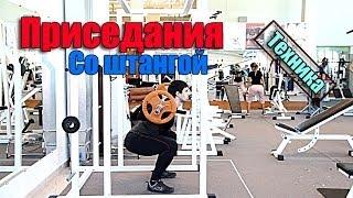 видео Какие мышцы работают при приседании со штангой