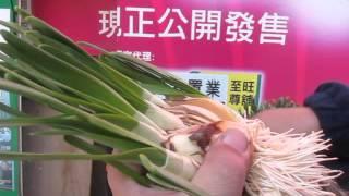 水仙花生長問題