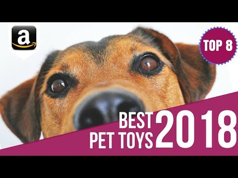 8 Best Interactive Pet Laser Toys, Ball Launcher Toys, Monitoring Camera for Cats and Dogs 2018