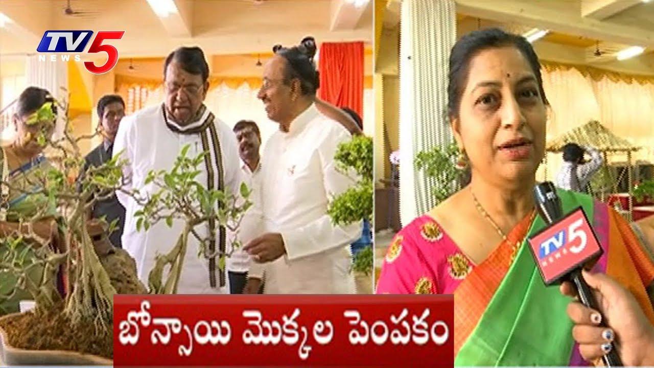 Bonsai Tree Exhibition Launched By Speaker Pocharam Srinivas Reddy | TV5  News