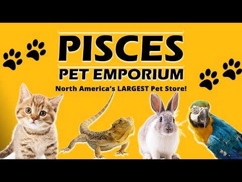 North America's Largest Pet Store!
