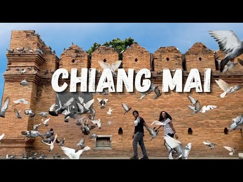 Our Chiang Mai Favorites!  5 Must-See Temples and Tips for Enhancing Your Visit