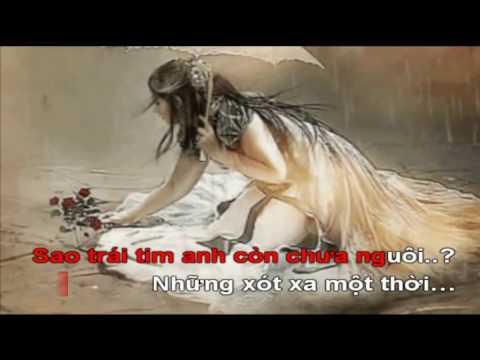 KARAOKE NỔI ĐAU MUỘN MÀNG (Bản 2) Nhạc và lời Ngô Thụy Miên - Tone nữ