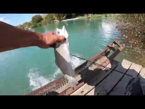 Рыбалка в Абхазии! Форель!Сентябрь 2019