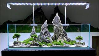 Mountain Aquarium Design