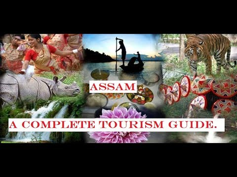 Assam - A complete tourism guide.