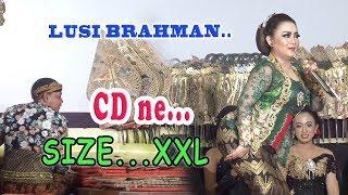 DALANGE KOCLOK...SINDEN 'E GENDENG......Lusi Brahman - Ki minto Darsono..