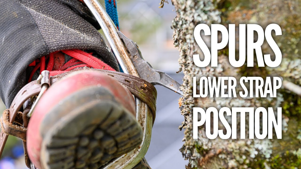 Why I wear my spurs different to most arborists