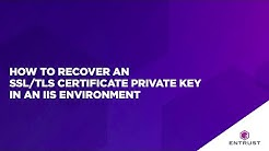 How to recover an SSL/TLS certificate private key in an IIS environment