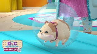 Runaway Roller | Doc McStuffins Pet Rescue | Disney Junior
