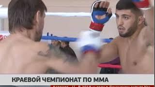 Краевой чемпионат по ММА. Новости 22/02/2018 GuberniaTV