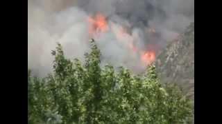 Quail Fire, Alpine Utah.