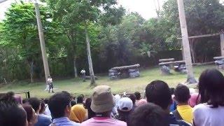 Pertunjukan harimau putih taman safari indonesia II prigen Pasuruan
