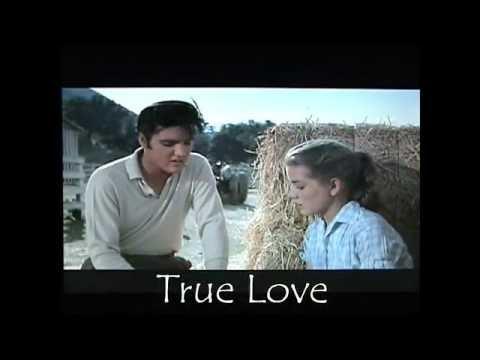 ♥♪♫ True Love ♫♪♥