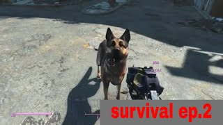 I lost my head Fallout 4 survival episode 2