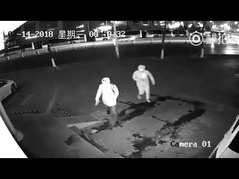 World's Most Dumbest Break in Thieves
