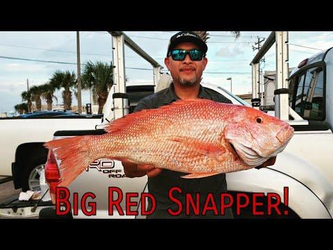 2019 Red Snapper Season (Galveston Texas Fishing) 7.29.19