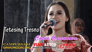 Tetesing Tresno - Catur Cassanova - CS. Sawunggaling Live Ceper - Vian Sound System