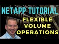 NetApp Flexible Volume Operations
