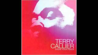 Watch Terry Callier Darker Than A Shadow video