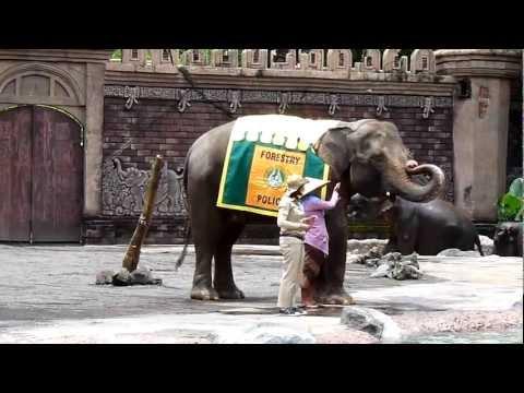 Bali Safari & Marine Park - Elephant show