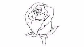 How to draw a rose | Как нарисовать розу | Cómo dibujar una rosa | Como desenhar uma rosa(How to draw a rose | Как нарисовать розу | Cómo dibujar una rosa | Como desenhar uma rosa | Wie man eine Rose zeichnen | Come disegnare una rosa ..., 2014-12-12T15:09:25.000Z)