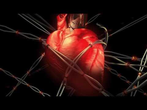 Что такое триглицериды в крови (биохимическом анализе