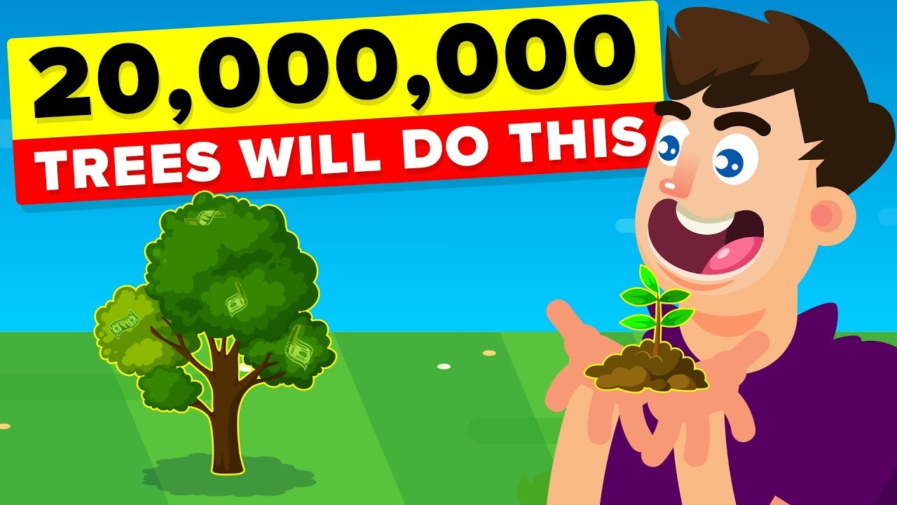 Planting 20,000,000 Trees Will Actually Have This Impact